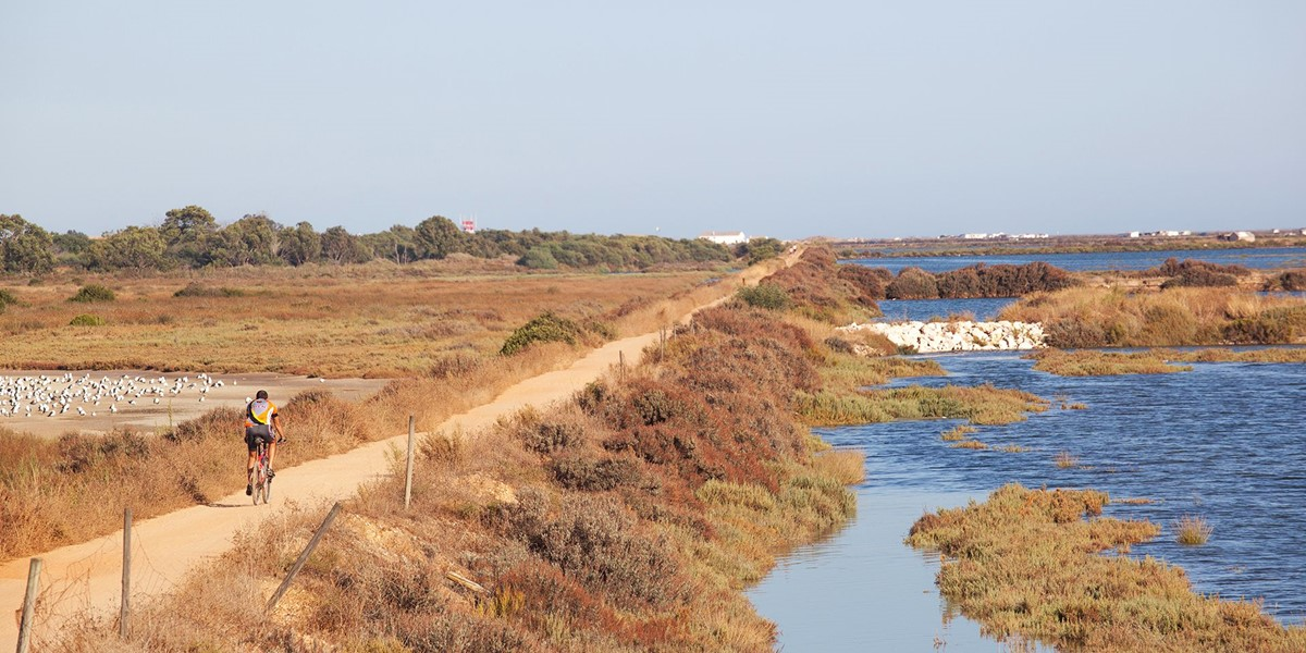 Quinta Do Lago Nature Reserve Cycling 1